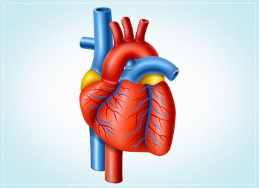CMS Recognizes Interventional Cardiologists as a Subspecialty in 2015