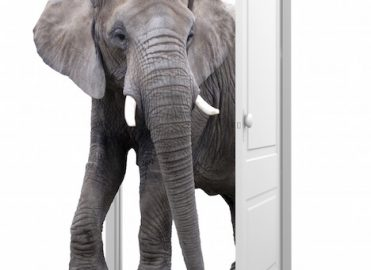 Cloning: Address the Elephant in the Room