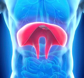 NeuRx Diaphragm Pacing System™ for ALS