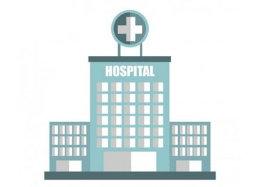 Hospital Observation Services in Brief