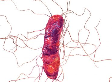 New Classification for Clostridium Difficile Infection in 2018