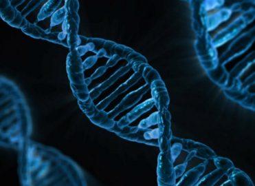 New Specialty Code for Genetics and Genomics