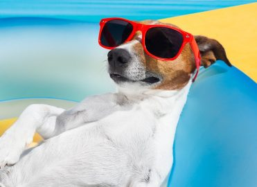 Keep Your Cool with July's Coding and Billing Challenges