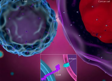 Coding CAR-T: Cancer Treatment Revolutionized