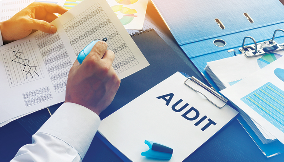 Healthcare worker performing an audit