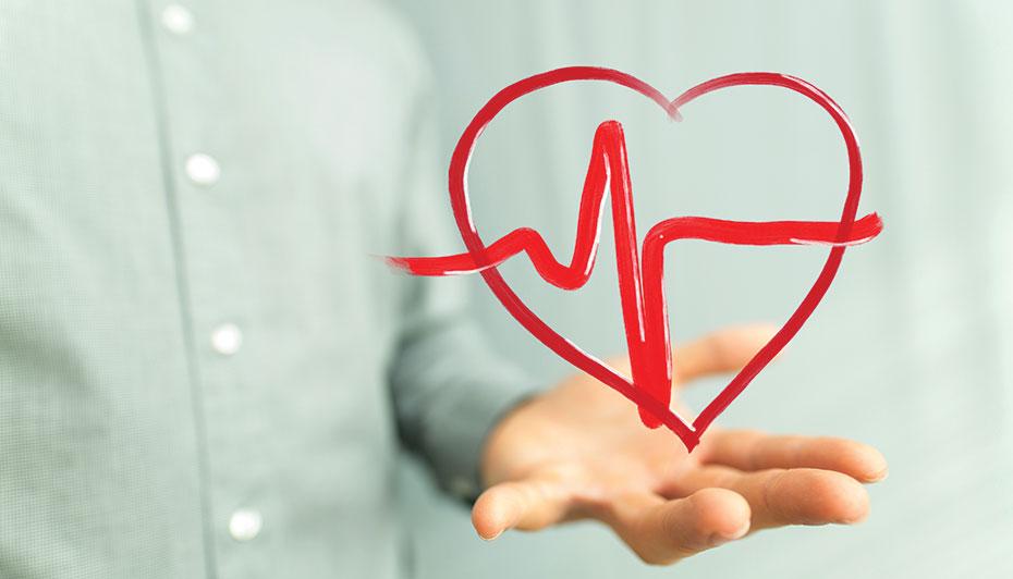 Audits heartbeat compliance program